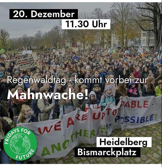 Regenwald Mahnwache Fridays For Future