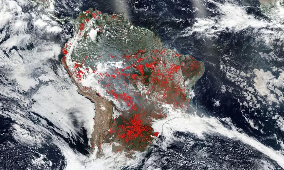 Brasilien Brandrodung Waldbrände NASA